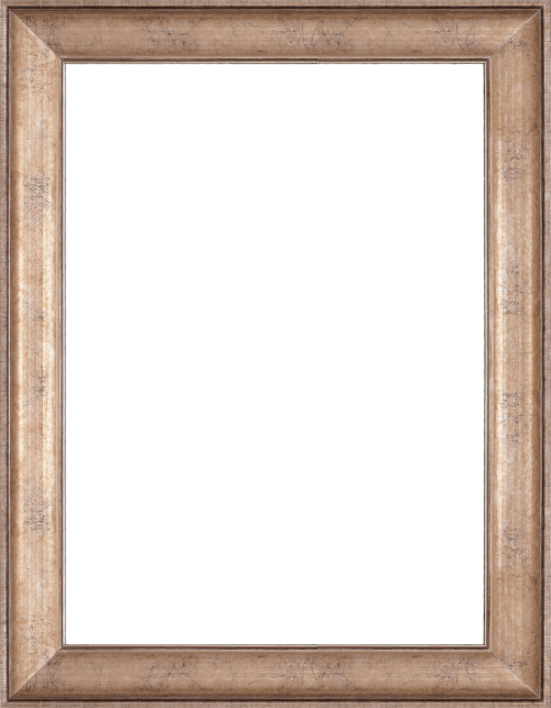 champagne mirror frame