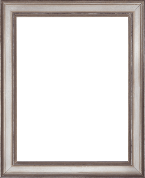 Antiqued Champagne Mirror Frame