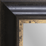 4137 Cambridge and Gold Framed Mirror
