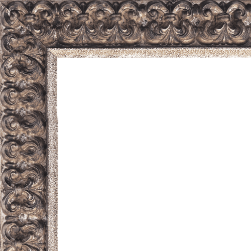 1593 mirror frame