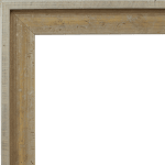 4021 Flat Champagne Mirror Frame
