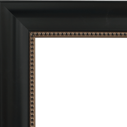 4031 mirror frame
