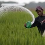 उत्तराखंड : सहकारी बैंकों की लोन भुगतान अवधि तीन महीने बढ़ी, साढ़े तीन लाख किसानों को राहत