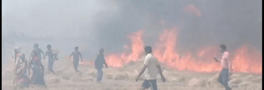 उधम सिंह नगर : गेहूं के खेत में आग, 30 से 35 एकड़ भूमि पर खड़ी व कटी फसल जल कर खाक