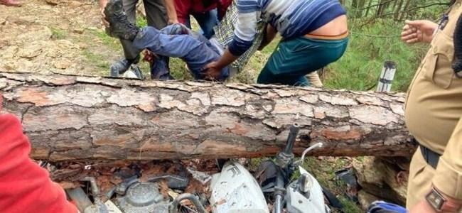 Uttarakhand तस्वीरें : चलती बाइक पर पेड़ गिरा, चालक घायल, स्थिति नाजुक
