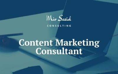 Who is a Content Marketing Consultant & What'll he do for You?