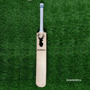 Cricket Bat from Kashmir