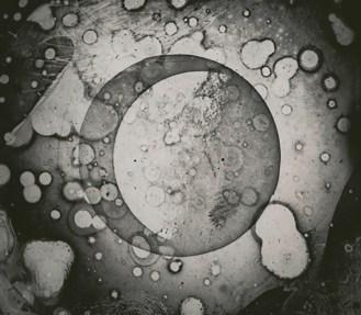 draper-moon-daguerreotype.jpg