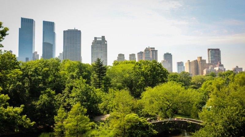An Upstater's View on New York City