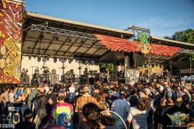 Disc Jam Music Festival 2019 (306 of 323)