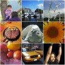 Weekly Photo Challenge: Happy! Happy is varied....
