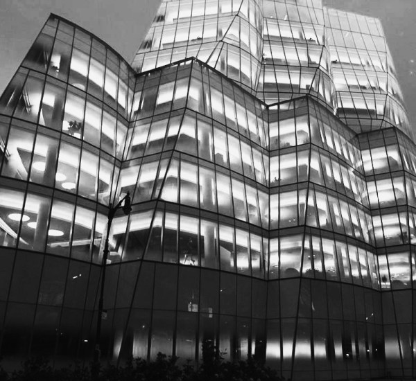 Photo 101-Week 3: From Color to Landscape - Frank Gehry Design Building