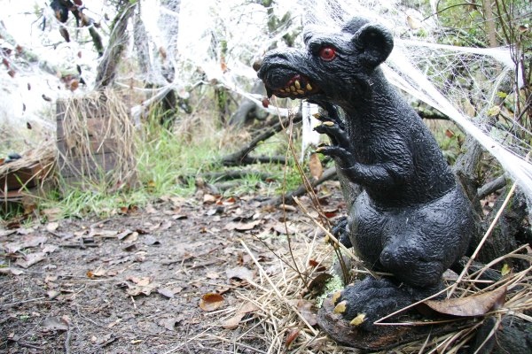 Writing 201:From A Journey Through Fog... A plastic garden rat