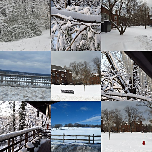 Weekly Photo Challenge: Forces of Nature - Scenes from a Snowstorm