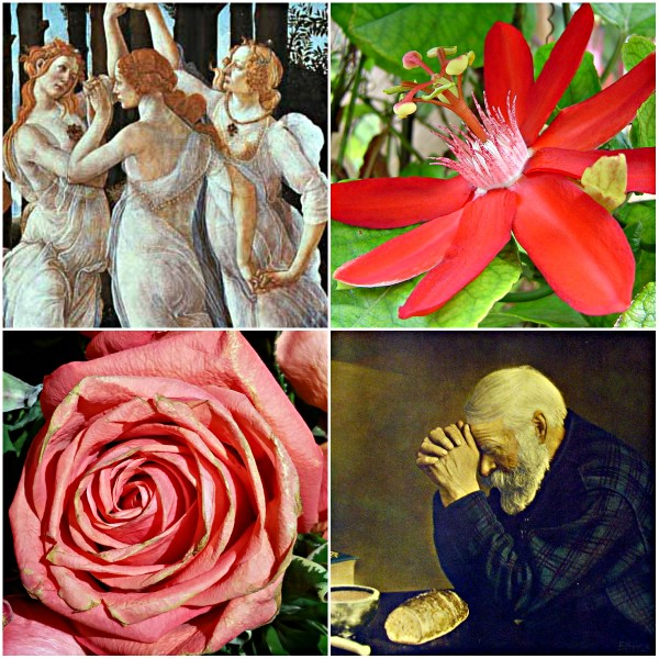 Motivation Mondays: GRACE - Three Graces, Saying Grace, Grace flower and graceful bloom.