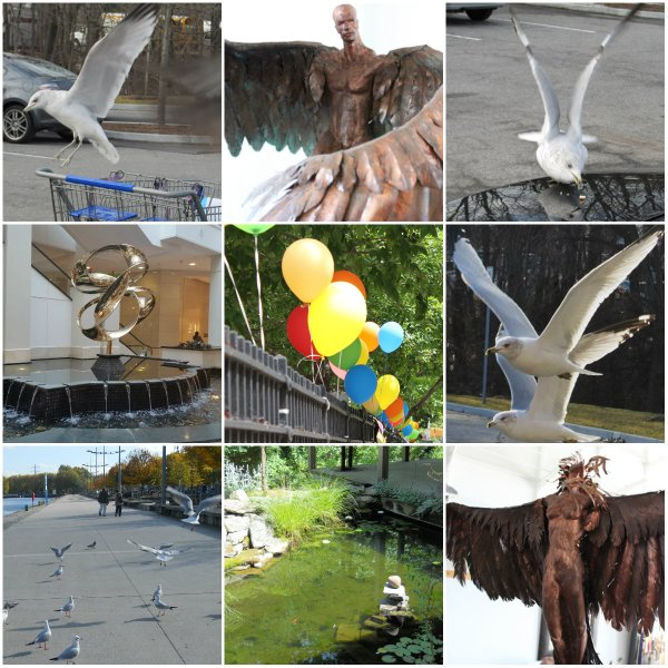 Weekly Photo Challenge: WEIGHT(LESS) - Balloons, Birds, and Floating Fish & Objects