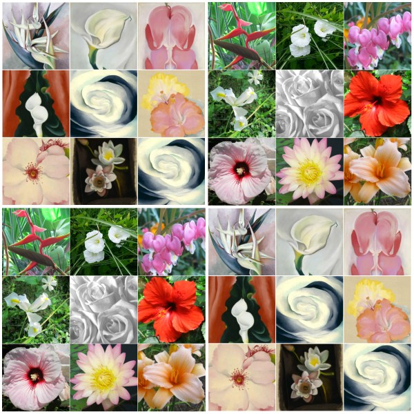 Weekly Photo Challenge: Life Imitates Art - Imitating Georgia O'Keeffe's Flower Drawings. Can you tell?