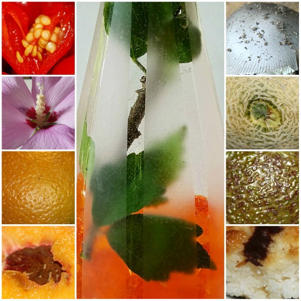 Weekly Photo Challenge: DETAILS - IN NATURE & THE KITCHEN