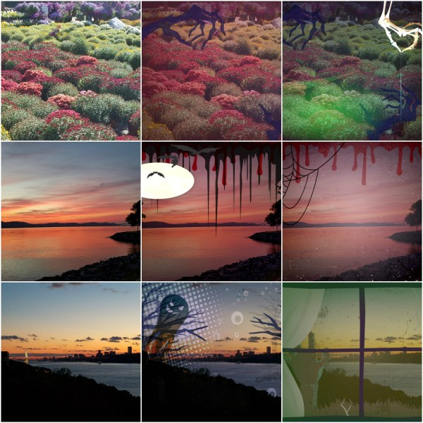Weekly Photo Challenge: TRANSMOGRIFY