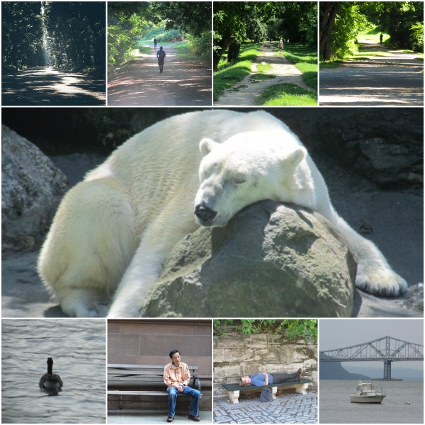 Weekly Photo Challenge: SOLITUDE - What alone time looks like...