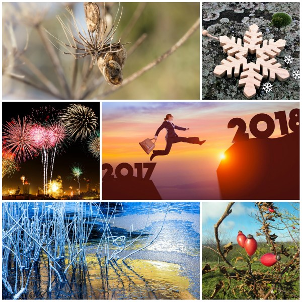 Reflections: The Year Finally Wraps up!