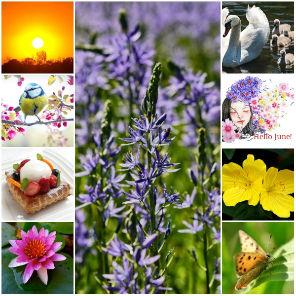 Motivation Mondays: Tips For June