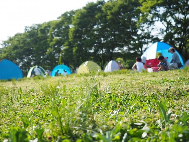 船橋アンデルセン公園でテントは必須?あったら良い持ち物とだめな持ち物は?の画像
