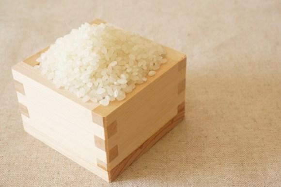 お米の保存に冷蔵庫が良いのはなぜ?保存期間と保存容器のおすすめも