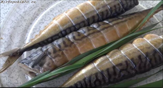 сколько времени занимает холодное копчение рыбы скумбрии