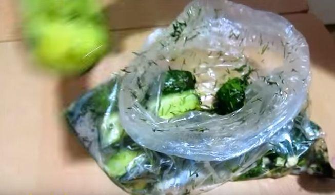 Сухая засолка огурцов в пакете с горчицей