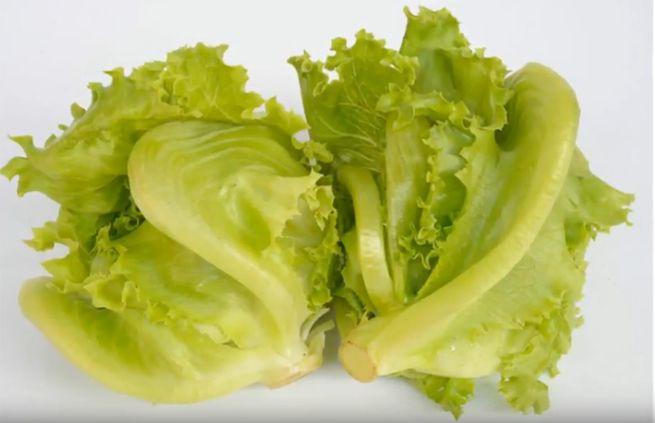 Основные хитрости использования зелени в блюдах