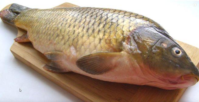 Как правильно хранить рыбу