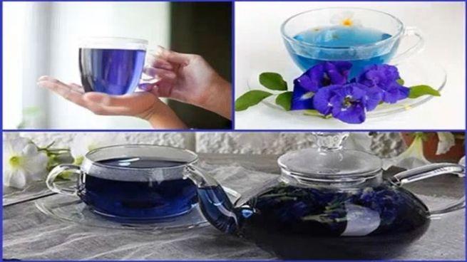 помог пурпурный настой из цветков