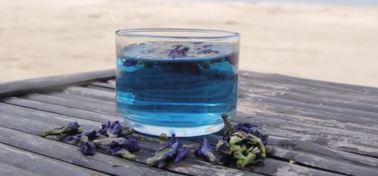 Order right now Purple Chang Shu Tea: where to order, value, Reviews from Real Consumers