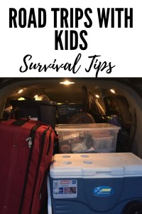 Awesome and Practical Tips for Road Trips with Kids