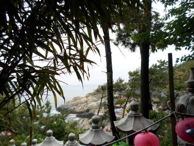 Yonggungsa Temple through the leaves