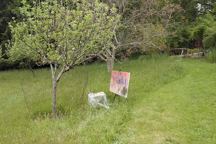 Kathy Robertson artist on Salt Spring Island