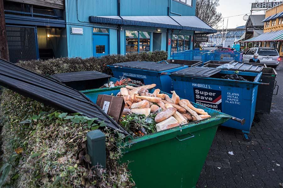 Dumpster food 7
