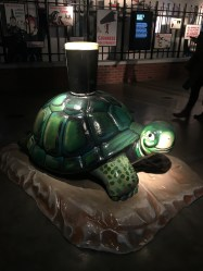Turtle in the marketing area of Guinness