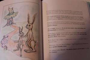 """Ilustraciones de """"El conejito quería dormirse"""""""