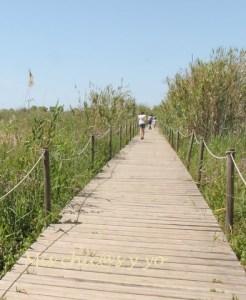 Itinerario de Cal Tet en el Delta del Llobregat