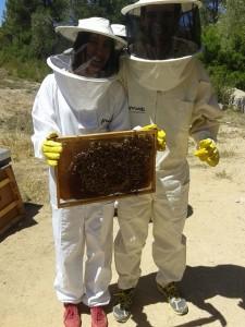 Productores de miel, Benvinguts a pagès
