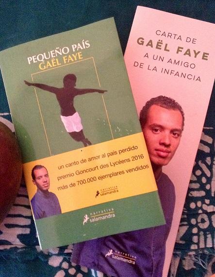Pequeño país. Gaël Faye