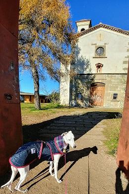 Fachada de la Ermita de sant Francesc. Olot