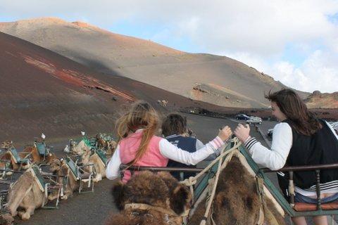 El echadero de los camellos. Lanzarote con niños