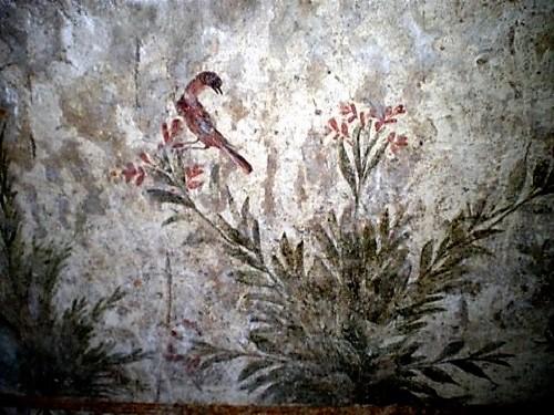 Detalle de las pinturas Oplontis, pájaros y ramas