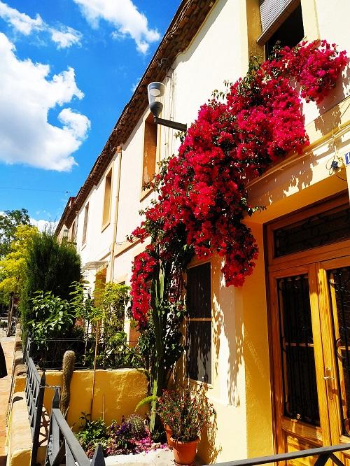 Calle de la Colonia con balcones llenos de flores