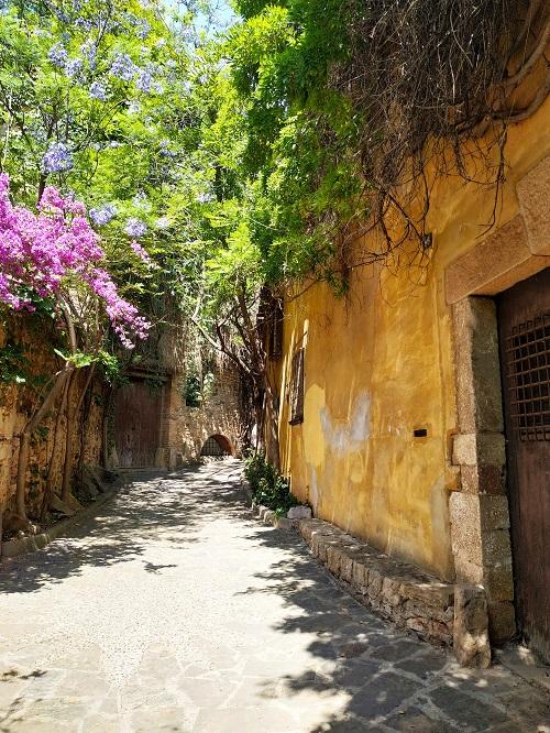 Detalle de la calle Montserrat, Esplugues de Llobregat