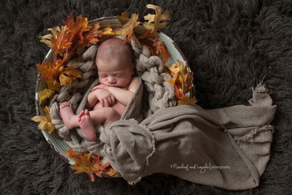 Mischief and Laughs Photography  Little Readers Northern Kentucky Newborn Photography