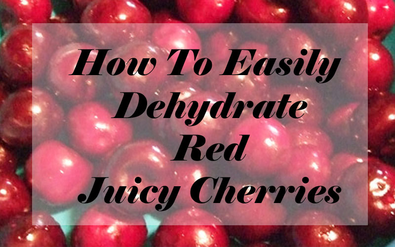 How To Easily Dehydrate Red Juicy Cherries
